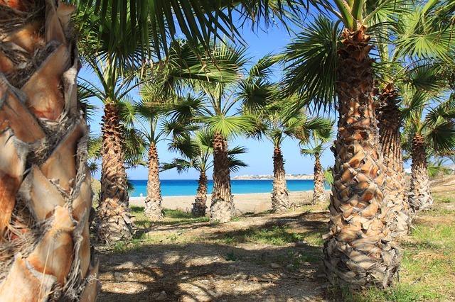 Słoneczny widok na palmy i lazurową wodę może popsuć biegunka podróżnych